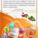 Jual HWI C Solo WA 082323155045